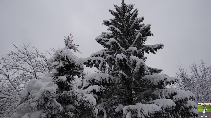2017-12-16 : Neige et déco de Noël à La Mainmorte (39) 2017-12-16_Neige_deco_noel_04