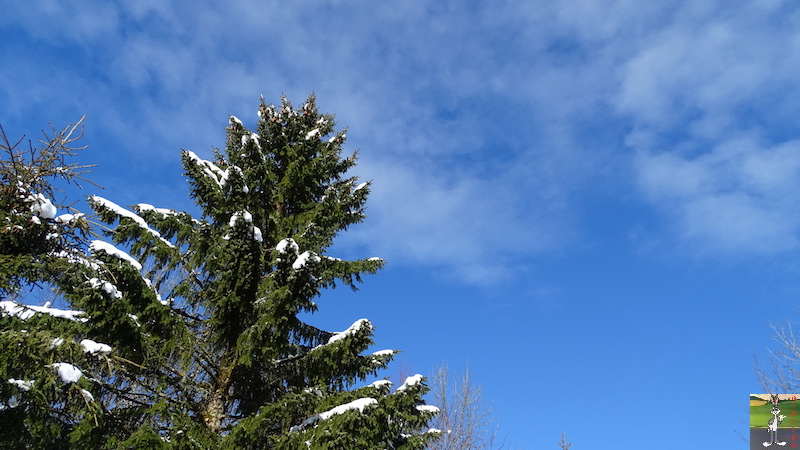 2018-01-27 : Neige, ciel bleu, soleil et brouillard à La Mainmorte (39) 2018-01-27_Neige_Soleil_Brouillard_04