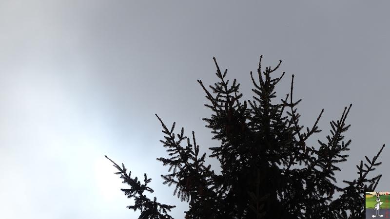 2018-03-03 : Neige, brouillard et soleil à La Mainmorte (39) 2018-03-03_neige_brouillard_soleil_06