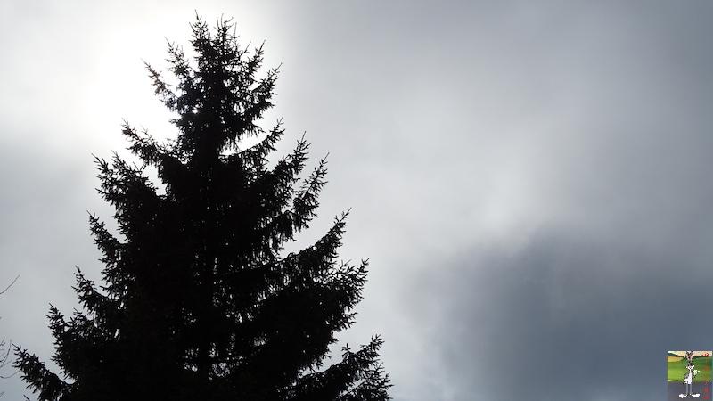 2018-03-03 : Neige, brouillard et soleil à La Mainmorte (39) 2018-03-03_neige_brouillard_soleil_07