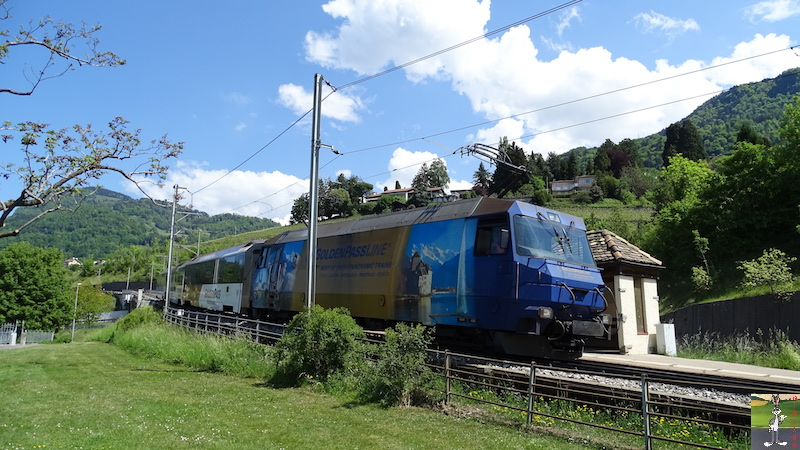 2018-05-08 : Balade en Suisse, Châtelard VD (VD, CH) 2018-05-08_Chatelard_VD_23