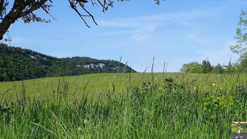 2018-05-19 : Balade à La Mainmorte (39) 2018-05-19_balade_08