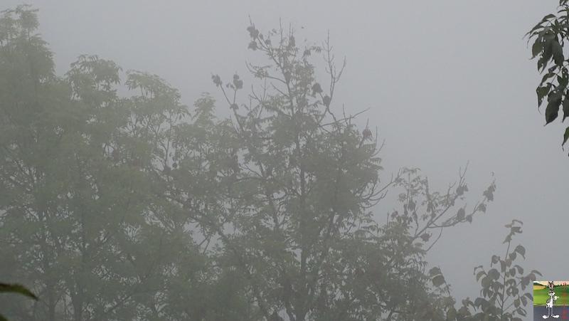 2018-10-07 : Brume et brouillard à La Mainmorte (39) 2018-10-07_moche_temps_11