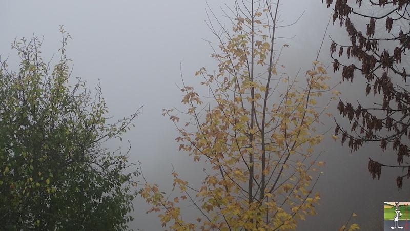 2018-10-27 : Brouillard à La Mainmorte (39) 2018-10-27_brouillard_01