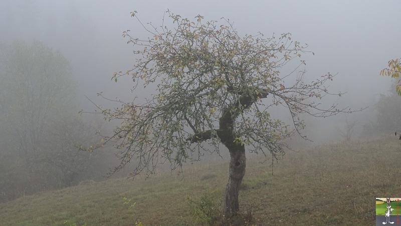 2018-10-27 : Brouillard à La Mainmorte (39) 2018-10-27_brouillard_06