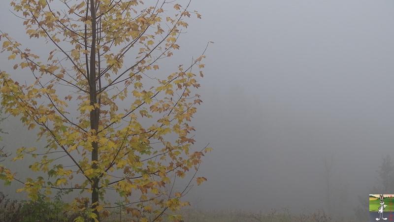 2018-10-27 : Brouillard à La Mainmorte (39) 2018-10-27_brouillard_09