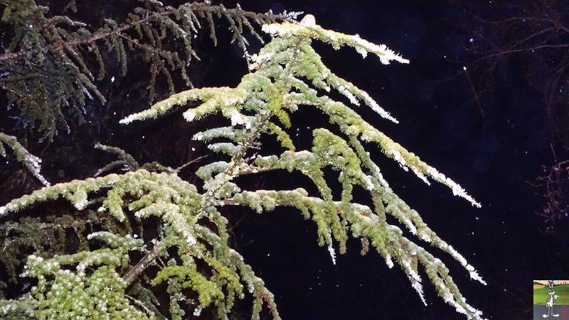 2018-12-10 : Il neige à La Mainmorte (39) 2018-12-10_neige_05