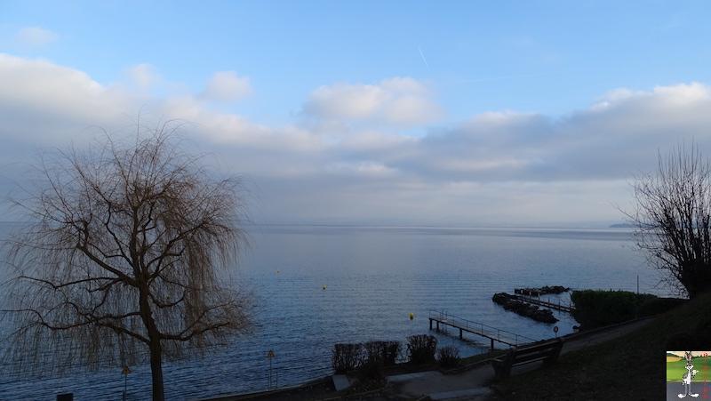 2018-12-26 : Balade aux bords du Lac Léman à Gland (VD, CH) 2018-12-26_leman_01