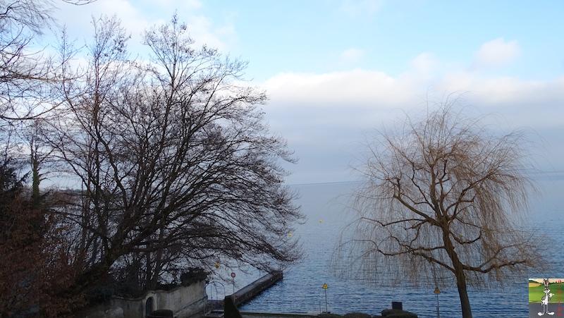2018-12-26 : Balade aux bords du Lac Léman à Gland (VD, CH) 2018-12-26_leman_02