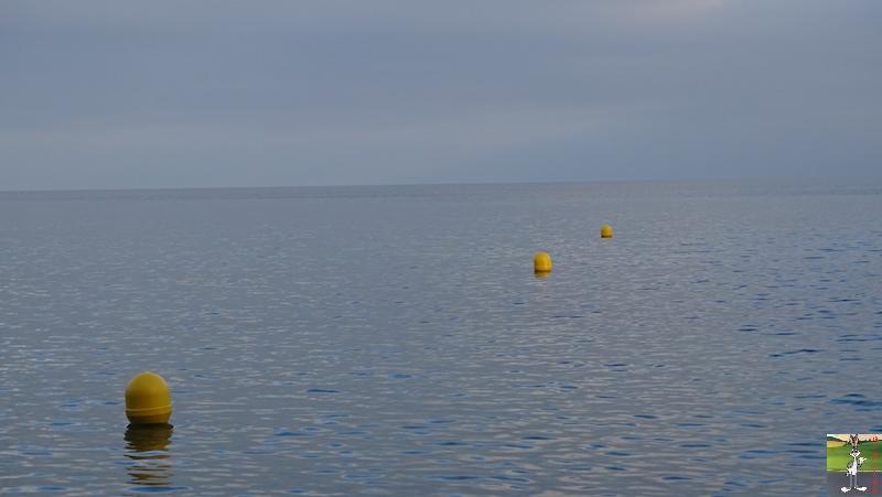 2018-12-26 : Balade aux bords du Lac Léman à Gland (VD, CH) 2018-12-26_leman_05