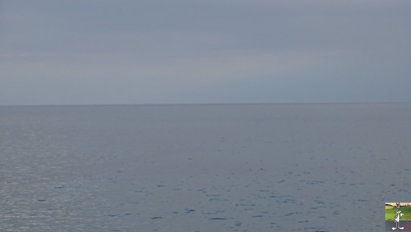 2018-12-26 : Balade aux bords du Lac Léman à Gland (VD, CH) 2018-12-26_leman_08
