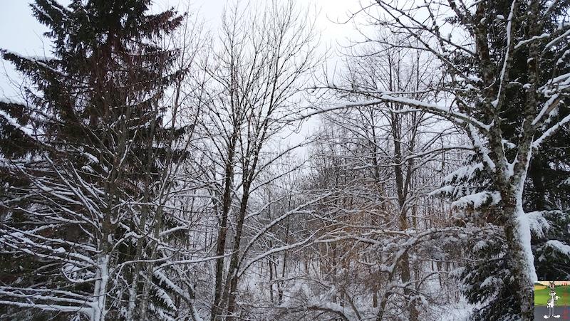 2019-01-12 : La météo est changeante à La Mainmorte (39) 2019-01-12_meteo_10