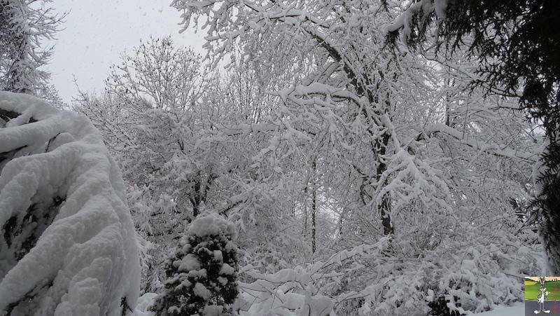 2019-01-13 : La neige tombe abondamment à La Mainmorte (39) 2019-01-13_neige_03