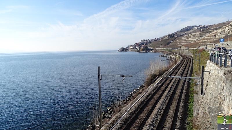 2019-01-19 : Sur les bords du Lac Léman (VD, CH) 2019-01-19_leman_05