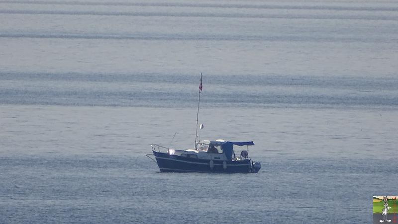 2019-01-19 : Sur les bords du Lac Léman (VD, CH) 2019-01-19_leman_06