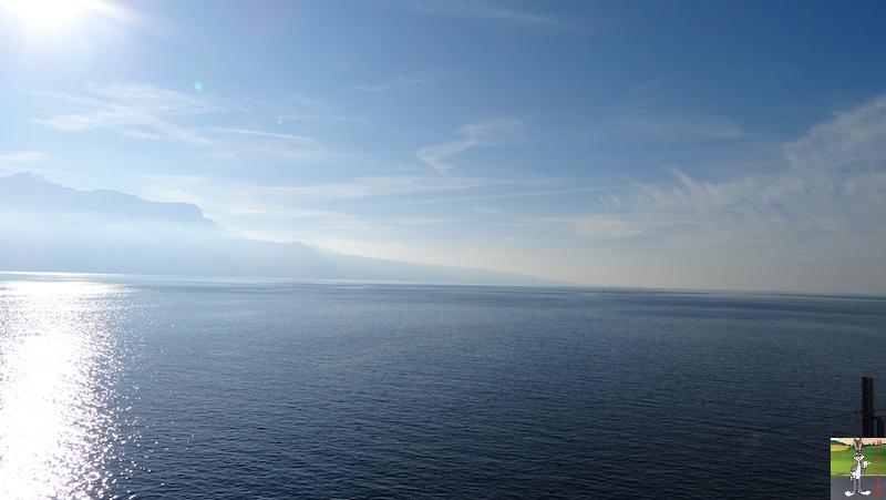 2019-01-19 : Sur les bords du Lac Léman (VD, CH) 2019-01-19_leman_11