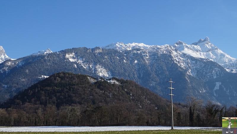 2019-01-19 : Sur les bords du Lac Léman (VD, CH) 2019-01-19_leman_20