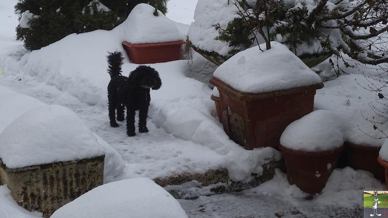 2019-01-26 : Changement de temps à La Mainmorte (39) 2019-01-26_neige_02