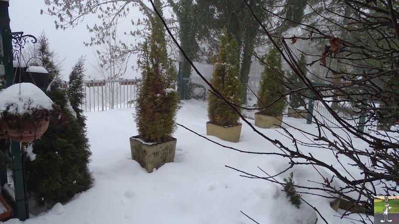 2019-01-26 : Changement de temps à La Mainmorte (39) 2019-01-26_neige_03