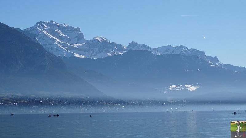 2019-02-16 : Annecy, son Lac et ses montagnes (74) 2019-02-16_annecy_09