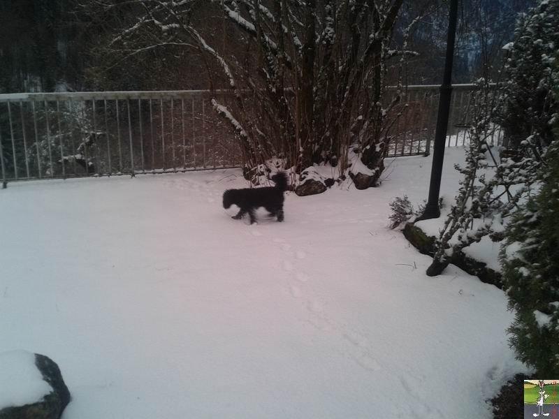2019-03-11 : Retour de la neige à La Mainmorte (39) 2019-03-11_re_neige_08