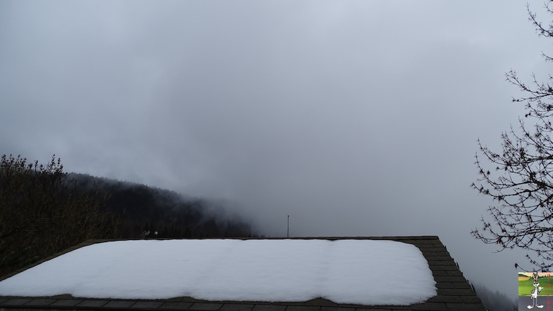 2019-04-07 : Temps griset humide à La Mainmorte (39) 2019-04-07_temps_gris_02