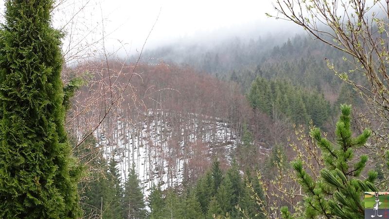 2019-04-07 : Temps griset humide à La Mainmorte (39) 2019-04-07_temps_gris_04
