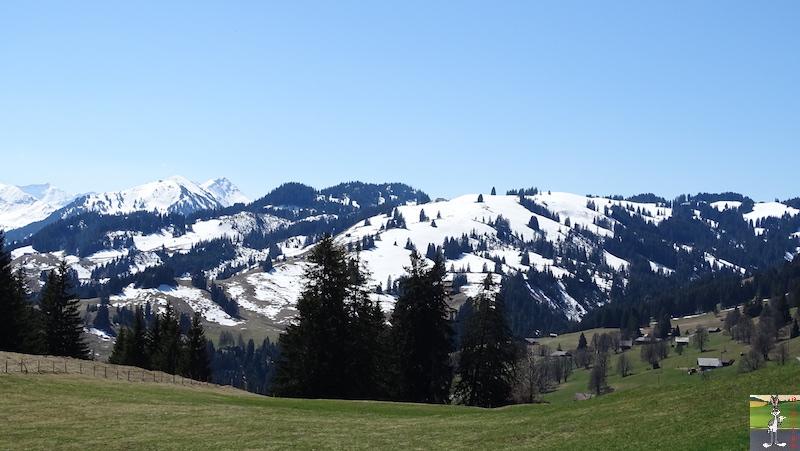 2019-04-20 : Balade en Suisse dans le Canton de Bern (BE, CH) 2019-04-20_suisse_04