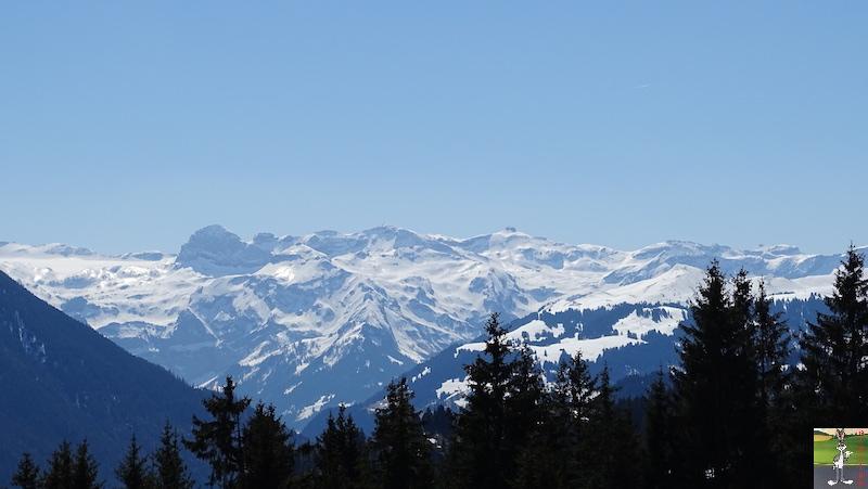 2019-04-20 : Balade en Suisse dans le Canton de Bern (BE, CH) 2019-04-20_suisse_05