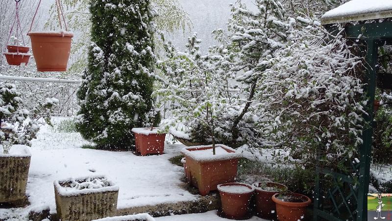2019-04-28 : Et rebelotte, retour de la neige à La Mainmorte (39) 2019-04-28_neige_09