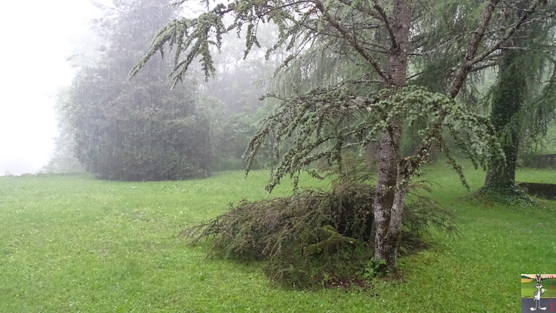2019-06-15 : Orage à La Mainmorte (39) 2019-06-15_deluge_02