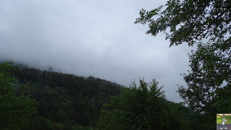 2019-07-28 : Grisaille et pluie à La Mainmorte (39) 2019-07-28_grisaille_01