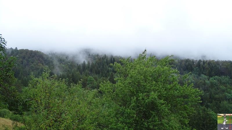 2019-07-28 : Grisaille et pluie à La Mainmorte (39) 2019-07-28_grisaille_02
