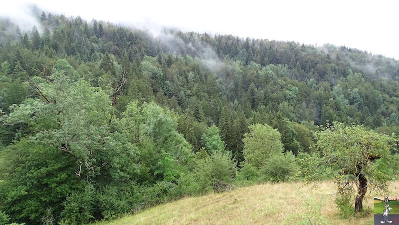 2019-07-28 : Grisaille et pluie à La Mainmorte (39) 2019-07-28_grisaille_03