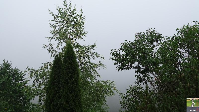 2019-07-28 : Grisaille et pluie à La Mainmorte (39) 2019-07-28_grisaille_11