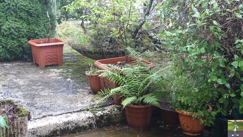 2019-07-28 : Grisaille et pluie à La Mainmorte (39) 2019-07-28_grisaille_15