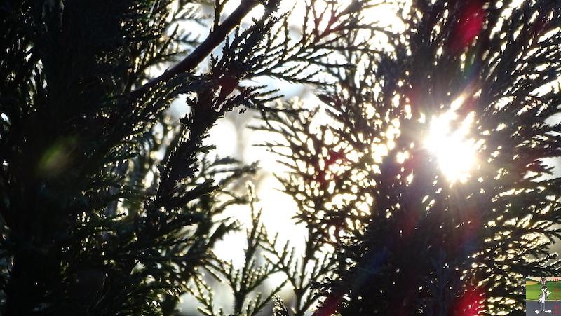 2019-12-15 : Beau temps à La Mainmorte (39) 2019-12-15_beau_temps_08