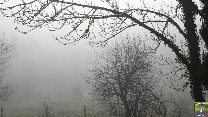 [39] - 2020-01-11 : Balade entre soleil et brouillard à La Mainmorte 2020-01-11_Mainmorte_02