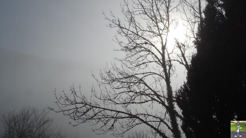 [39] - 2020-01-11 : Balade entre soleil et brouillard à La Mainmorte 2020-01-11_Mainmorte_11