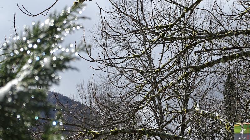 [39] - 2020-01-18 : Petit voile blanc et soleil à La Mainmorte 2020-01-18_neige_soleil_08