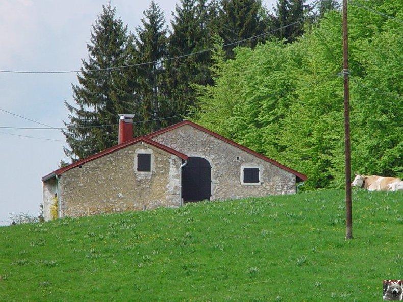 La Ferme du Haut-Jura 0019