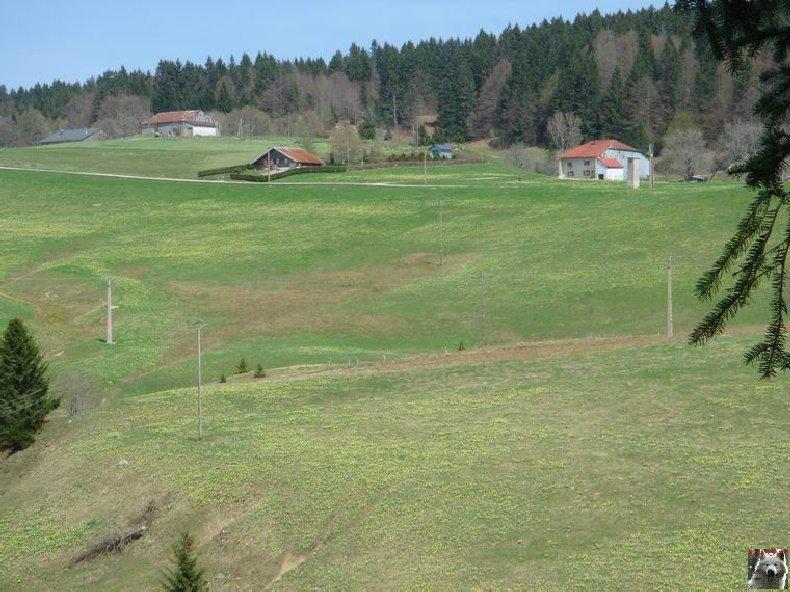 La Ferme du Haut-Jura 0023