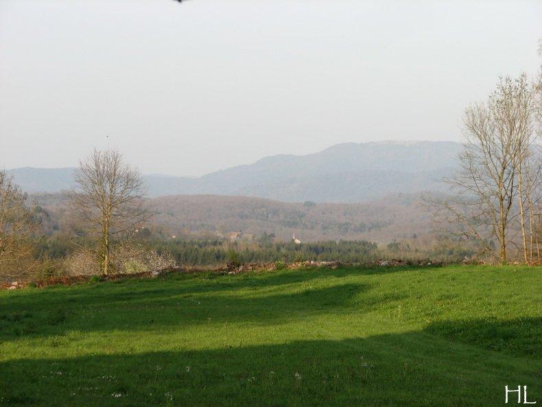 Hélène nous rapporte quelques images de Haute-Saône 0007