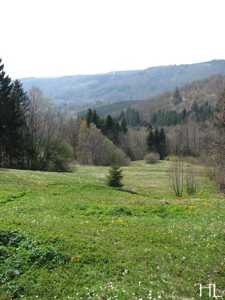 Hélène nous rapporte quelques images de Haute-Saône 0014