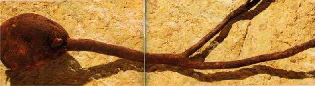 2006-06-22 - La Fabrication d'une Pipe de Saint-Claude (39) 0004