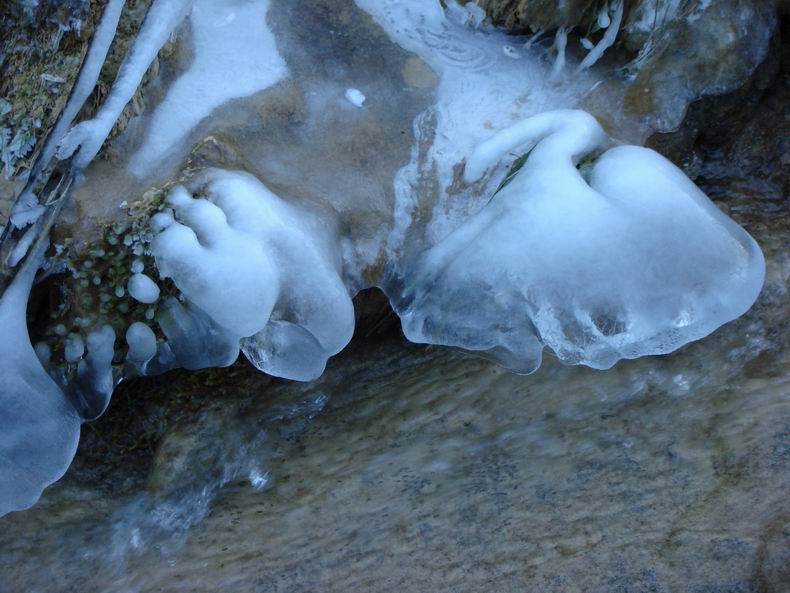 La Cascade des Tuffes - Grottes de Baume les Messieurs (39) Tuffes_10
