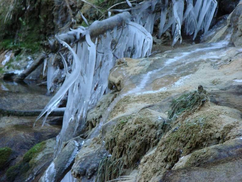 La Cascade des Tuffes - Grottes de Baume les Messieurs (39) Tuffes_11