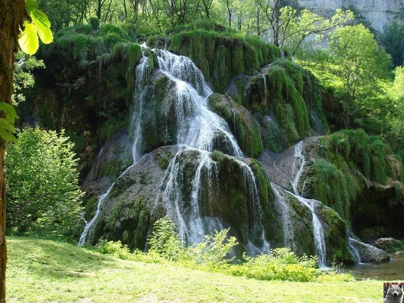La Cascade des Tuffes - Grottes de Baume les Messieurs (39) Tuffes_18