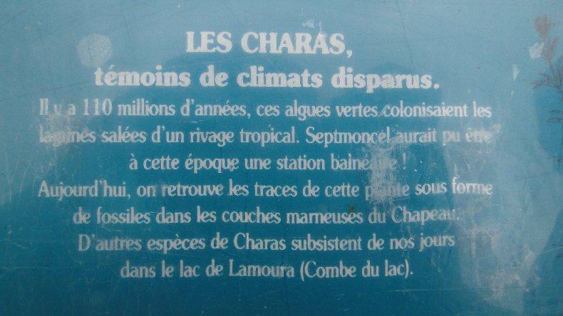 Le Chapeau de Gendarme - Les Lacets de Septemoncel (39). 0022