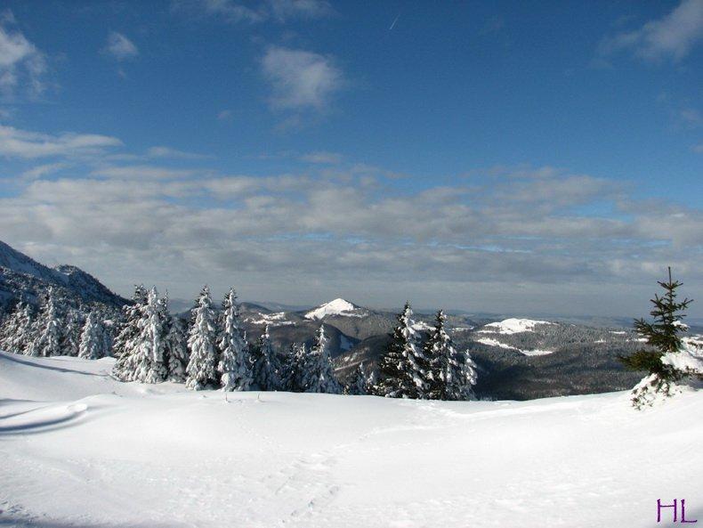 Au sommet de la Haute Chaine - Le Crêt de la Neige - 17/02/2010 0002